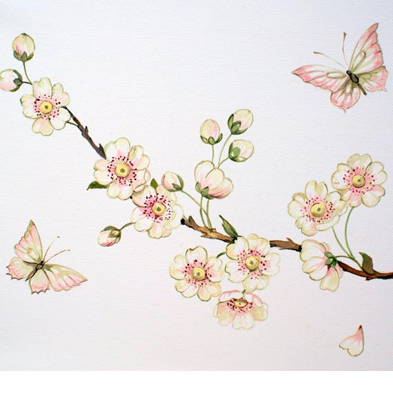Blossom & Butterflies