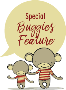 Special Buggies Feature